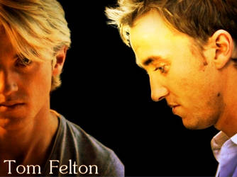 Tom Felton simply by MeAgainstYou