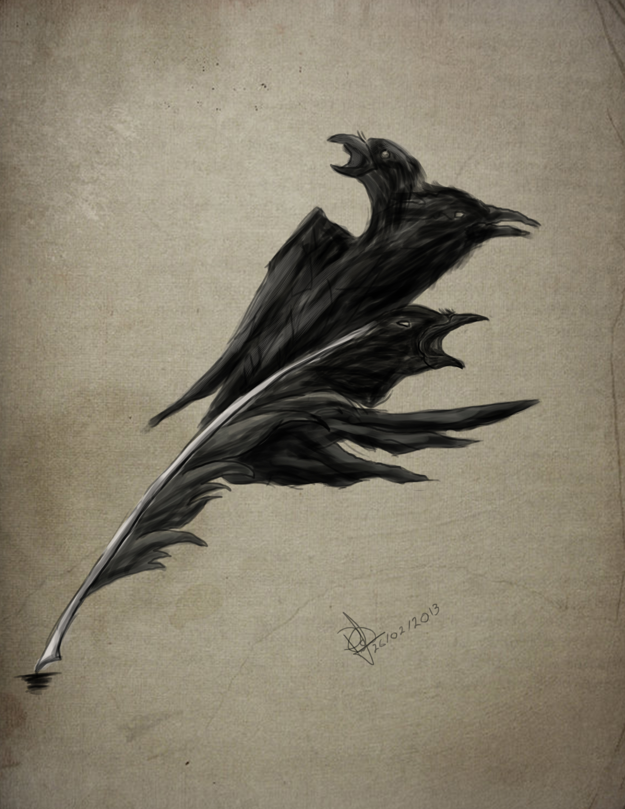 Crows feather by piera...