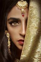 The Queen of Hindustan II by antzcreator