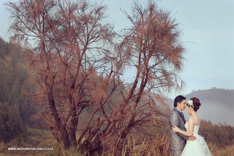 Pre wedding  at Bromo Mountain, Jawa Timur by antzcreator
