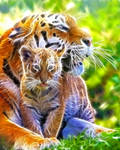 Mother and Cub Fractal