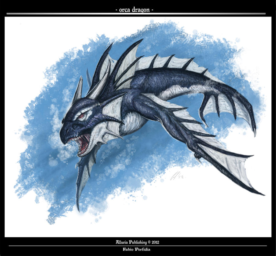 Orca Dragon by randolfo