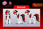 BlackJack [Flash puppet]