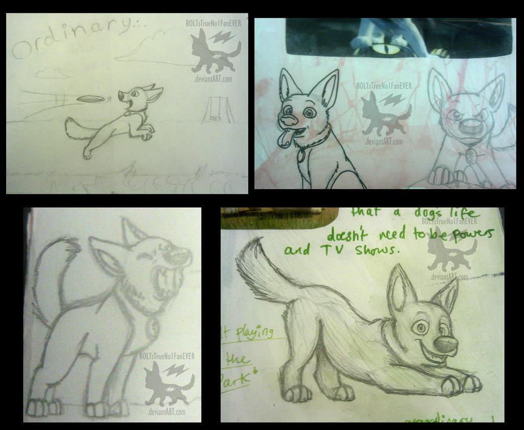 Visual GCSE Art Coursework