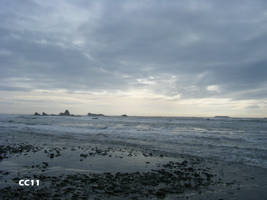 Ruby Beach 13 by SweetCera
