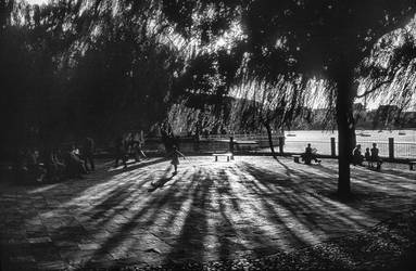 A Park in Beijing by zcw168
