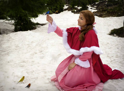 Belle-cosplay-beauty And The Beast  (3)