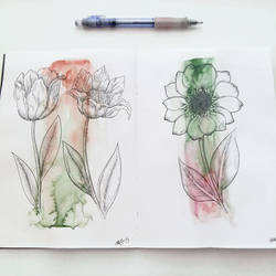Flowers by Borianna