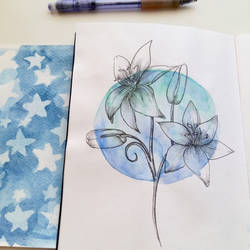 blue moon by Borianna