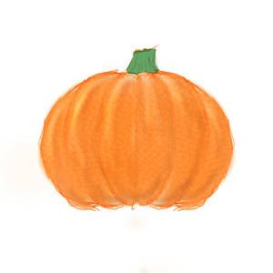 Pumpkin Sketch Challenge