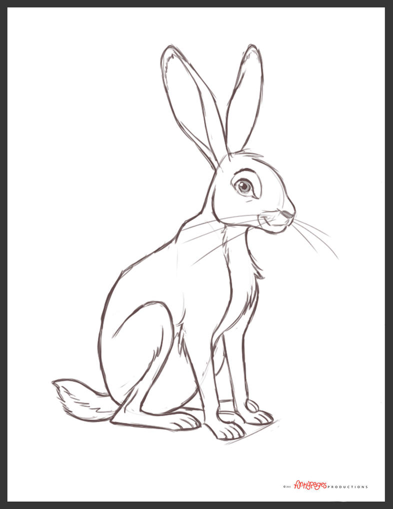 Related keywords suggestions for jack rabbit drawing for Jack rabbit coloring page