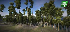 Realistic Tree7