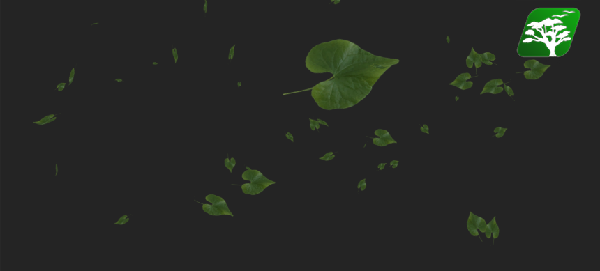 Falling Leaves by RakshiGames