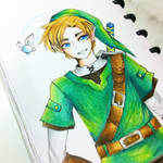 Link -Colored-
