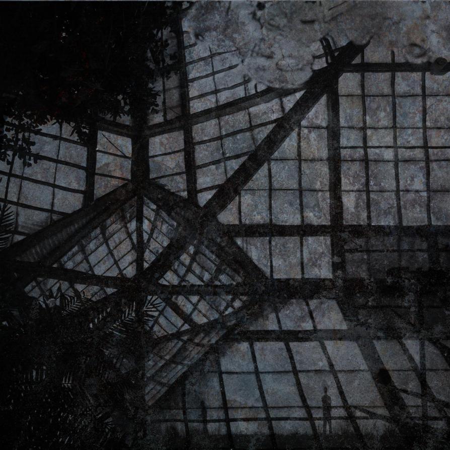 asylum by hclay
