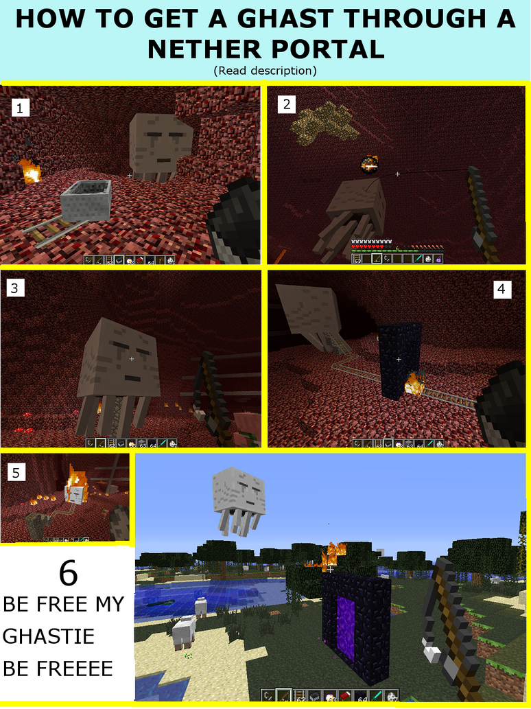 nether portals go to the same place meet