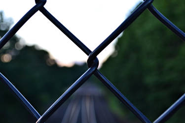 Fence by thepnwlife