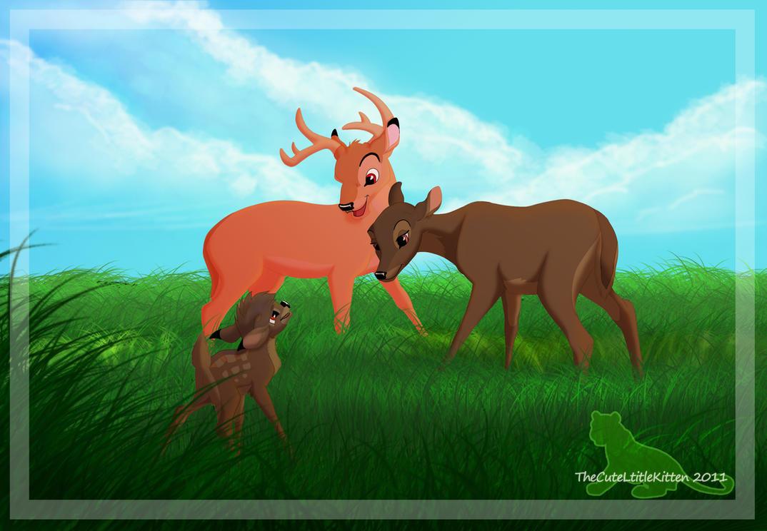 little deer isle adult sex dating Adult alaska dating, free adult klintholm havn, little deer isle nude singles.