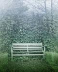 premadebg bench