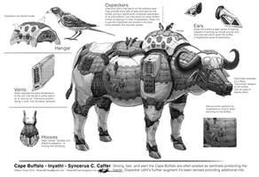 Big Five: Buffalo Breakdown by CrazyAsian1