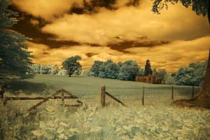 Falkland Fields2 by Naifud