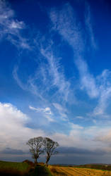 Heavens Above by Naifud