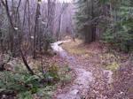 Pathway 15