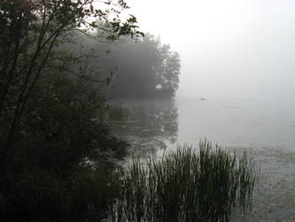 Foggy Lake - 2 by BVicius