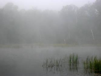 Foggy Lake - 3 by BVicius