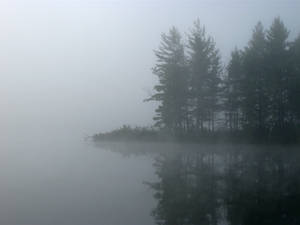 Foggy Lake - 4