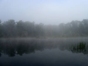 Foggy Lake - 8