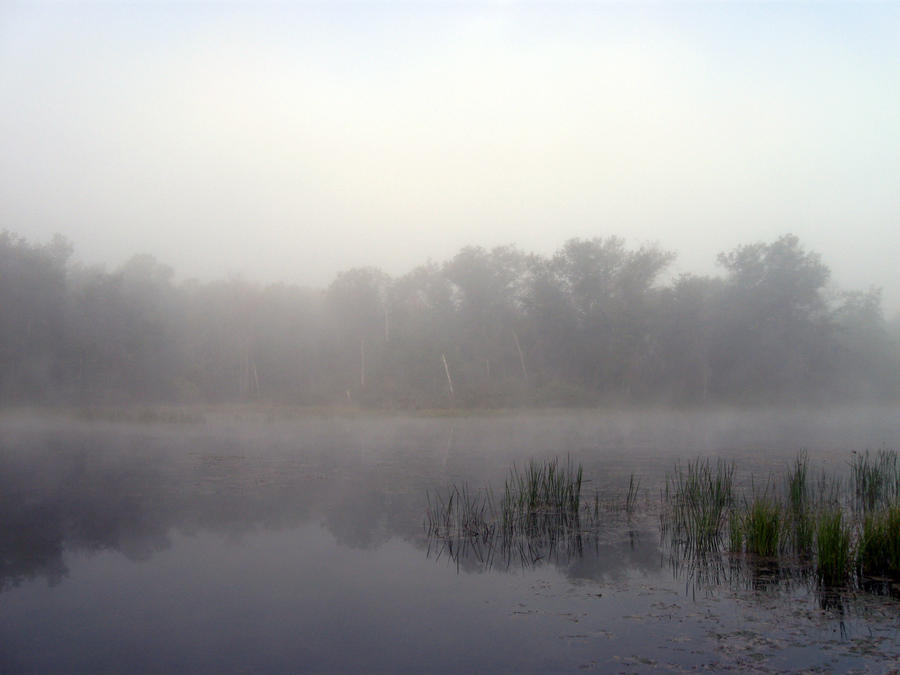 Foggy Lake - 9