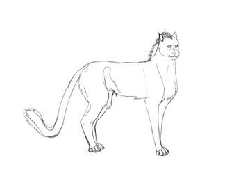 30 minute Shedu sketch by BVicius