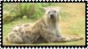 Hyena Stamp by Gin-No