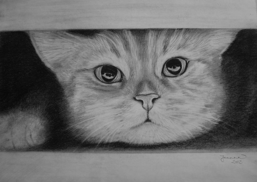 Hiding by JoannaMoory