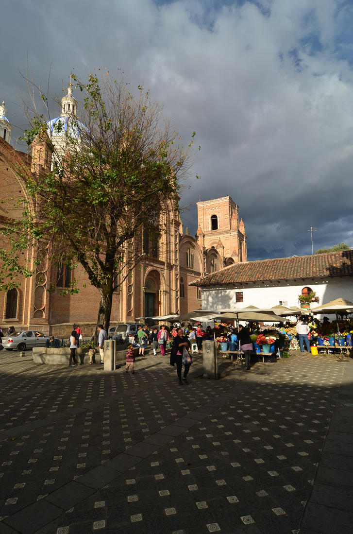 cuenca chat sites All about cuenca ecuador of all of the cities in ecuador, cuenca is arguably the most charming with its cobblestone streets, old-world cathedrals, co.