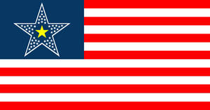 Libertarian United States flag.