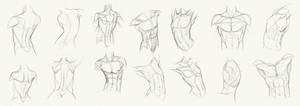 Anatomy Challenge, Part 01 - Body