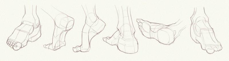 Anatomy Challenge, Part 05 - Feet