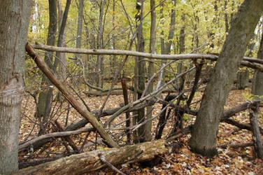 sticks by Demonikastock