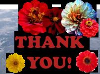 Thank You! by AudraMBlackburnsArt