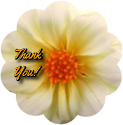 THANK YOU FLOWER by AudraMBlackburnsArt