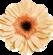 Daisy Two by AudraMBlackburnsArt