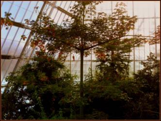 Cleveland Botannical Garden by Sugaree-33