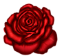 Redroseone by AudraMBlackburnsArt