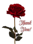 Thank You Red Rose by AudraMBlackburnsArt