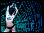 Lighting Web