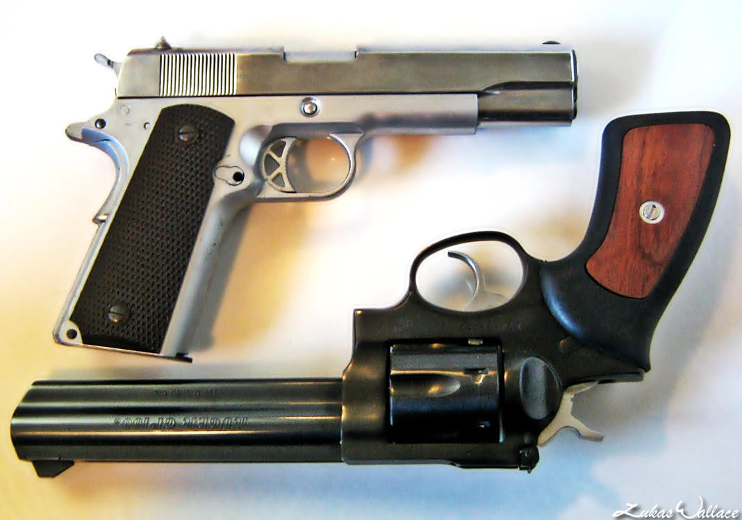 .357 Magnum and .45 - 03 by PxRxSxRx