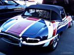 Jaguar - 002