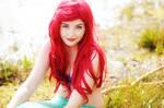 Ariel - TLM 4